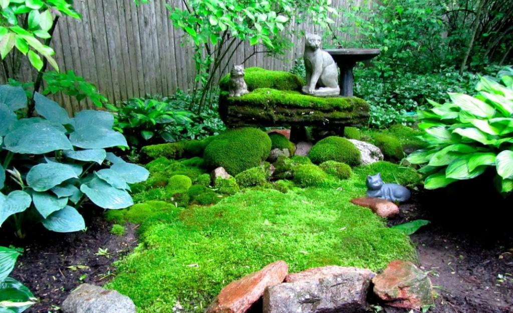 Зеленый мох на клумбе в японском стиле