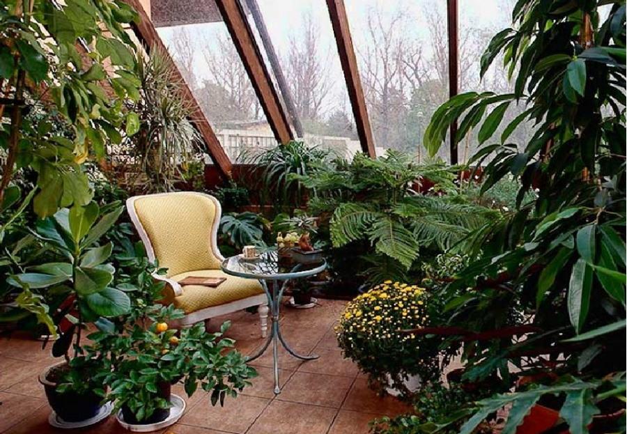 Зимний сад на мансардном балконе
