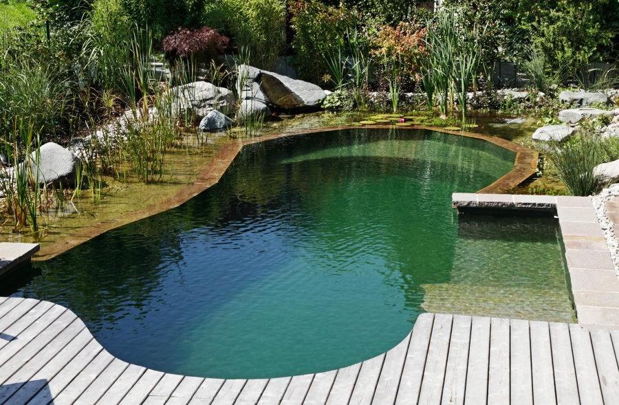 Плавательный пруд на даче с удобным подходом к воде