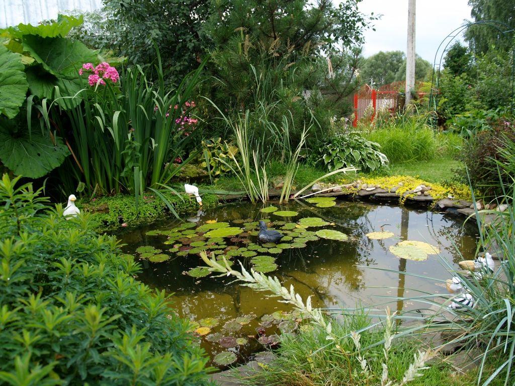 Искусственный пруд в природном стиле