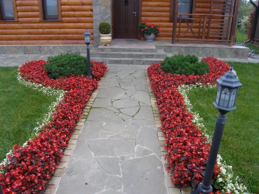 Красивые рабатки из однолетних цветов
