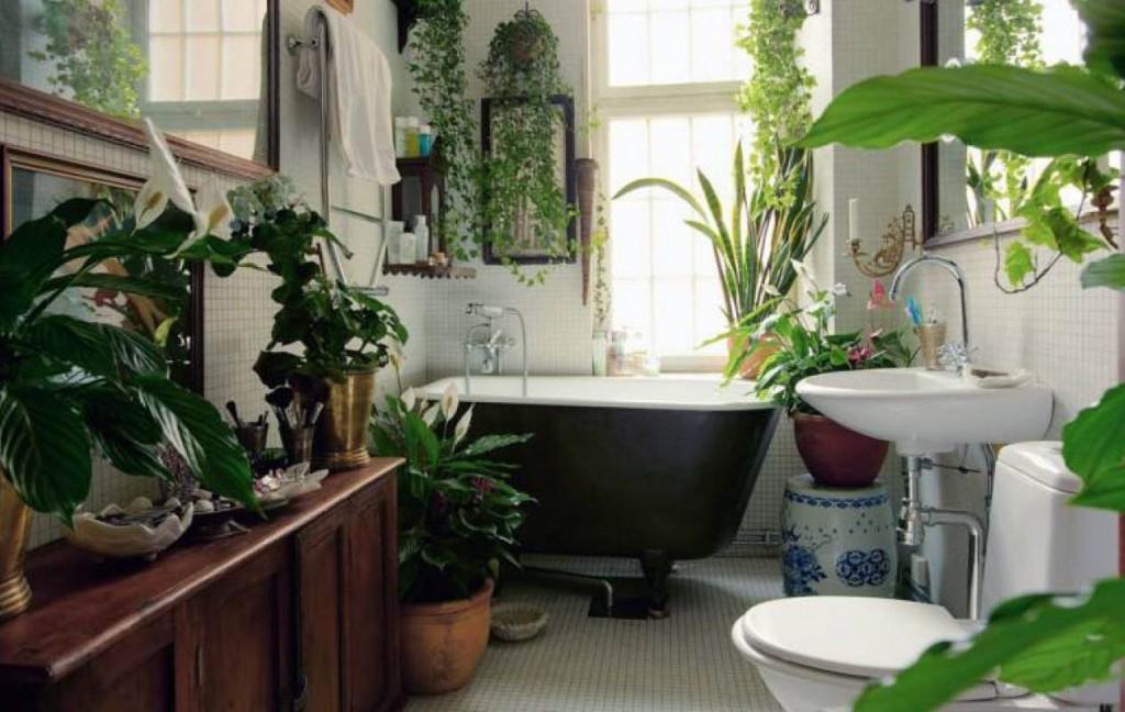 Декор растениями ванной комнате в доме