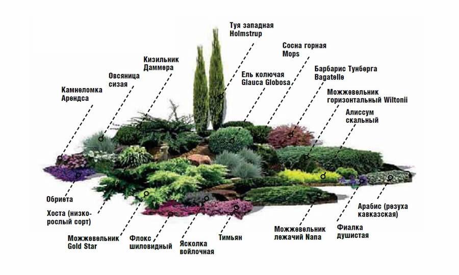 Схема альпийской горки на загородном участке
