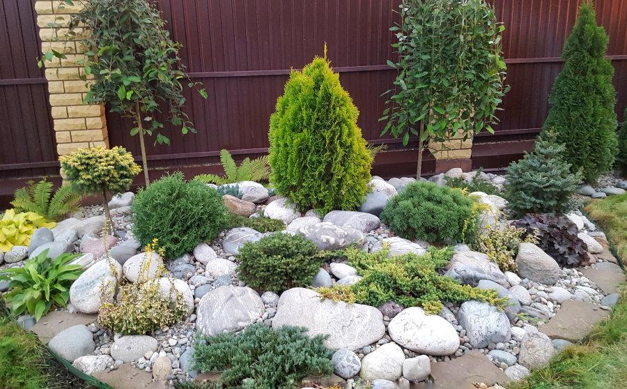 Альпийская горка с туей и другими хвойными растениями