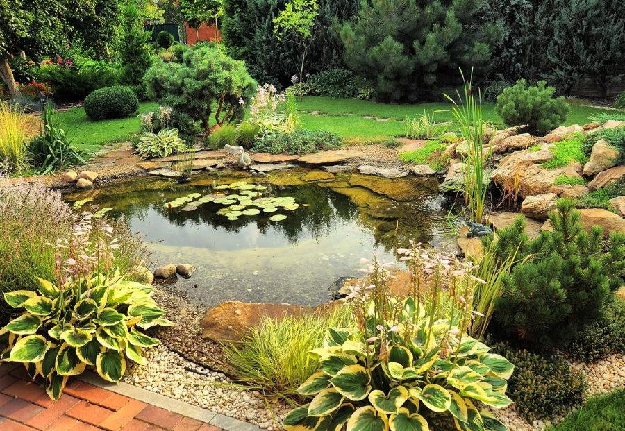 Водоем в природном стиле на садовом участке