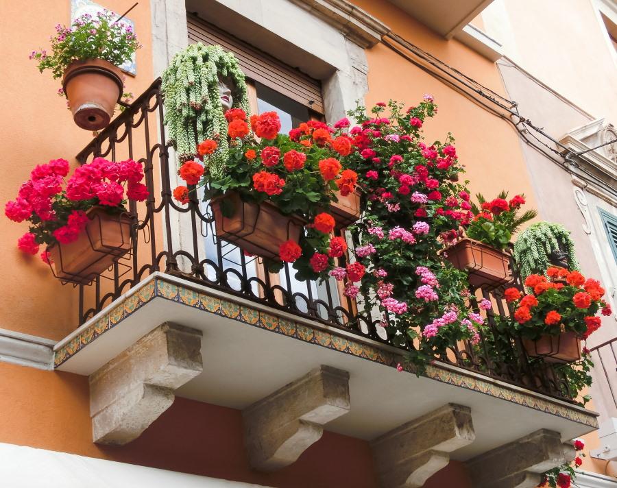Красивые цветы на перилах открытого балкона