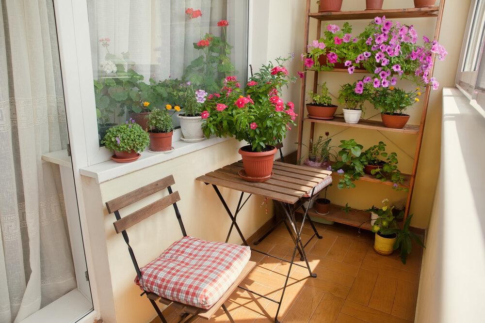Петунии и другие цветы в интерьере балкона