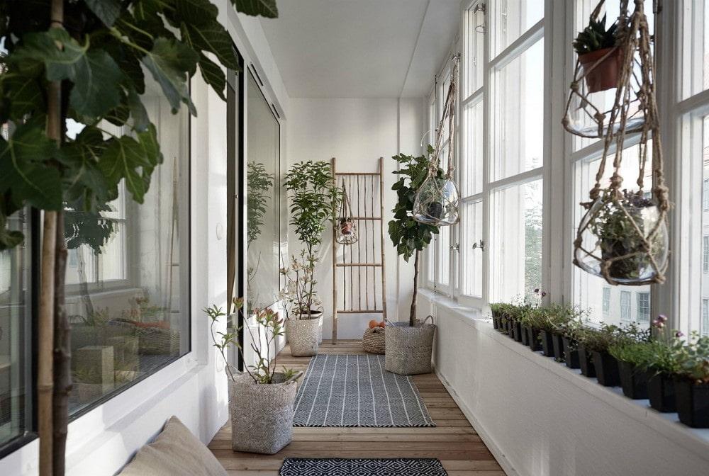 Домашний сад на утепленной лоджии
