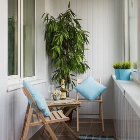 Комнатный цветок на балконе с теплым остеклением