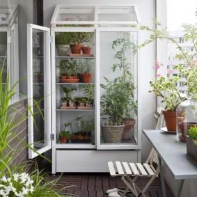 Термо-шкаф для экзотических растений на утепленной лоджии