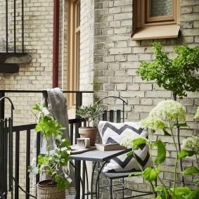 Живые растения в горшках на балконе