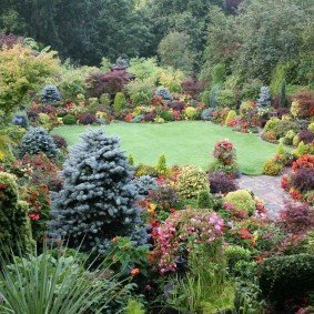 Роскошный сад с хвойными и другими растениями