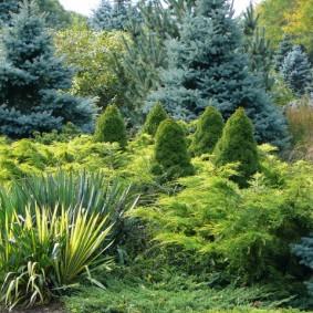 Ландшафтный дизайн сада в естественном стиле