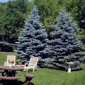 Садовая мебель из натуральной древесины