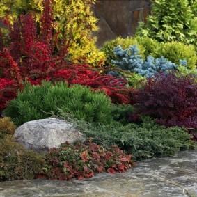 Серый валун среди многолетних растений