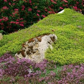 Природный камень на холмистом участке