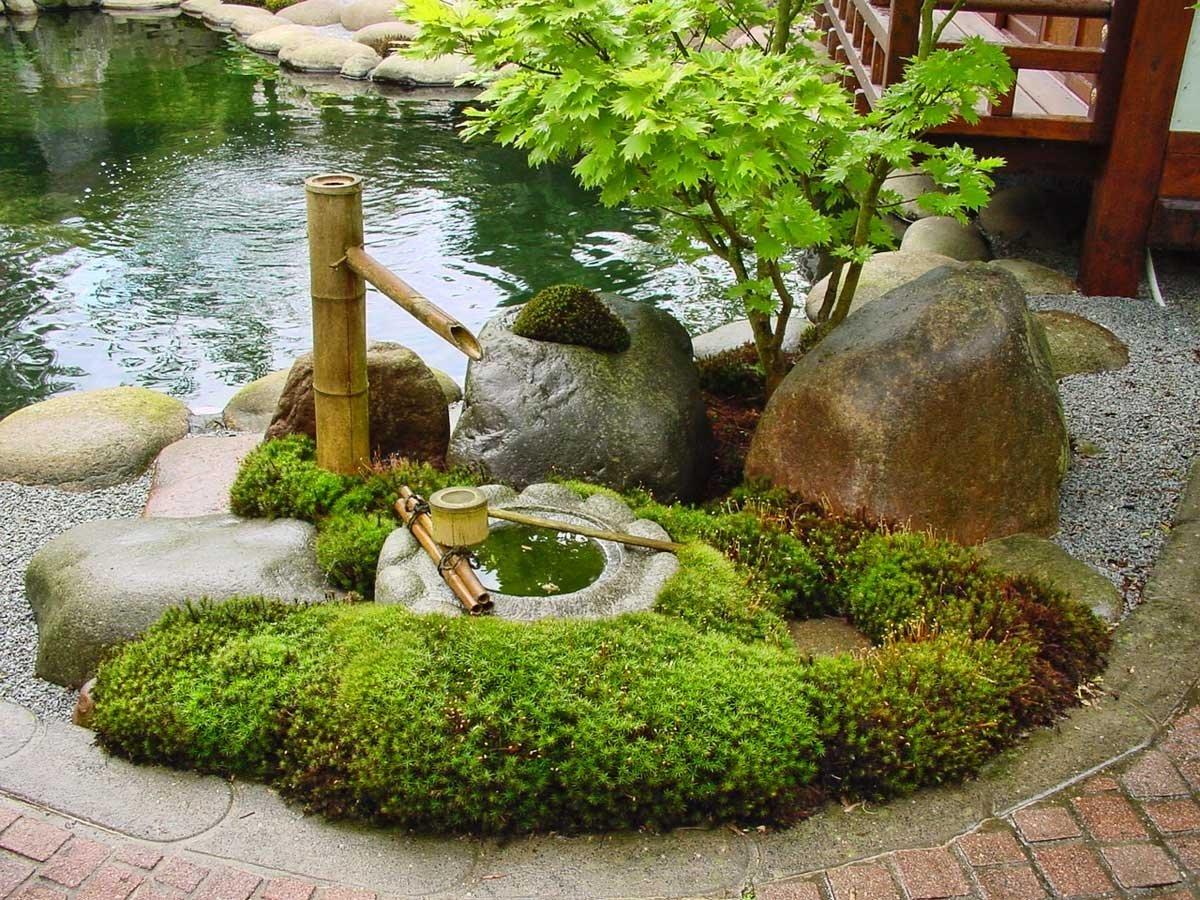 сад камней своими руками фото родов лежала патологии