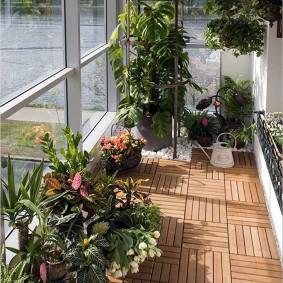 Зимний сад на балконе с большими окнами