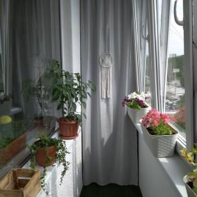 Живые цветы на узком балконе