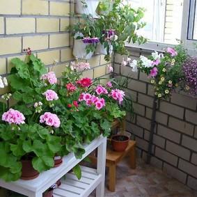 Деревянный столик с цветущими растениями