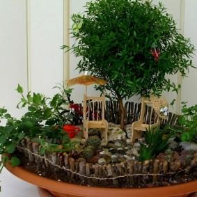 Мини-сад на маленькой лоджии