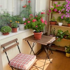 Комнатные цветы в интерьере балкона
