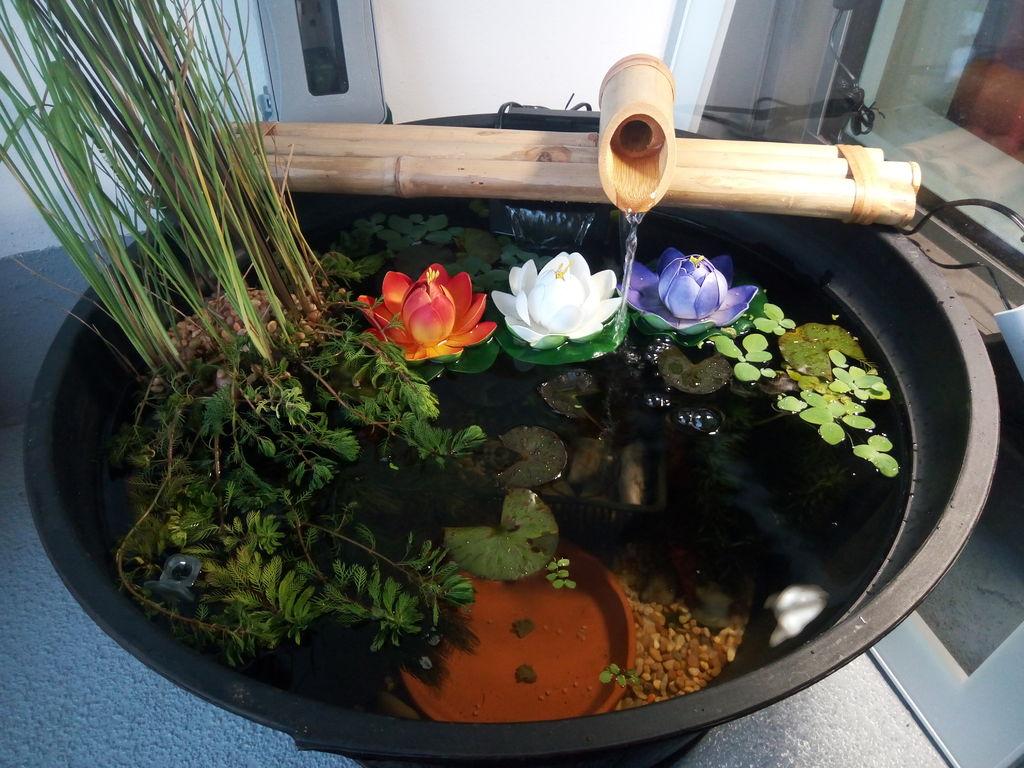 Мини-водоем для зимнего сада на лоджии
