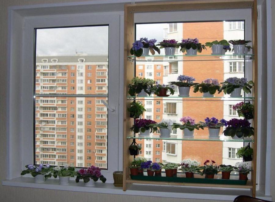 Оконные полки в гостиной комнате городской квартиры