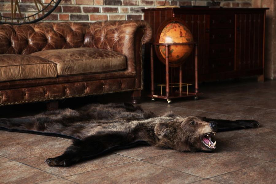 Шкура медведя на полу гостиной в стиле лофт