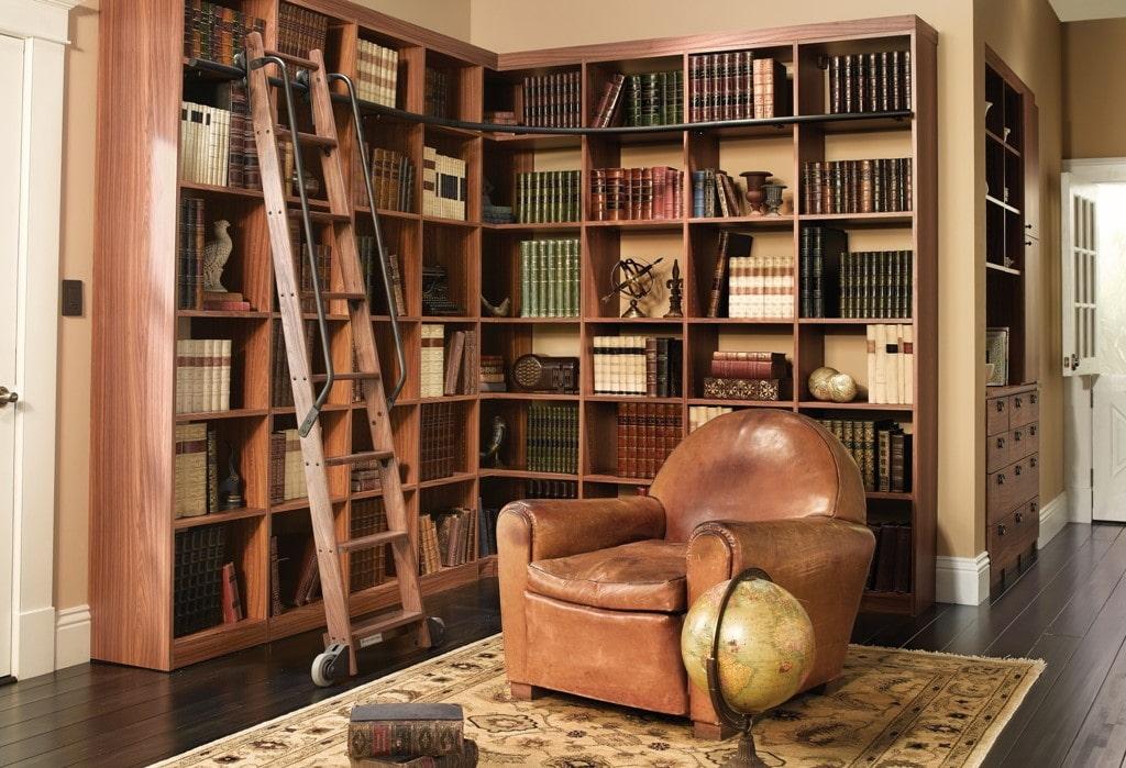 Приставная лестница в гостиной с домашней библиотекой