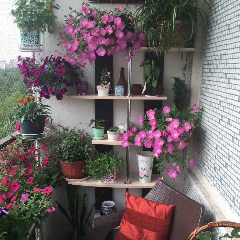 Полочки для цветов на стене лоджии