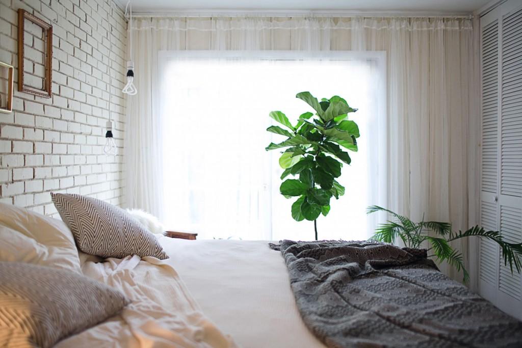 Комнатные цветы в интерьере спальни