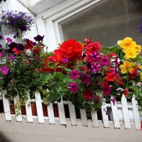 Роскошный цветник на открытом балконе