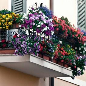 Подвесной балкон с однолетними цветами