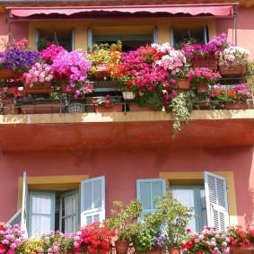 Фото открытого балкона с красивыми цветами