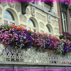 Классический балкон с живыми цветами