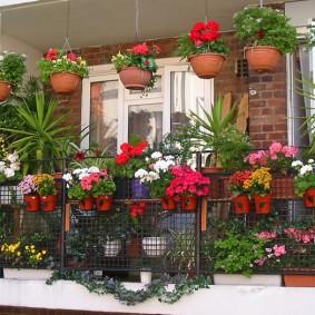 Декорирование цветами парапета балкона