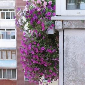Декор вьющимися цветами узкого балкона