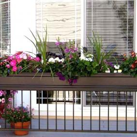 Длинный вазон с балконными цветами
