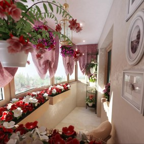 Стильная лоджия с декоративными растениями
