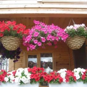 Плетенные кашпо с однолетними цветами
