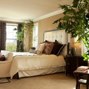 Живые растения в дизайне спальни