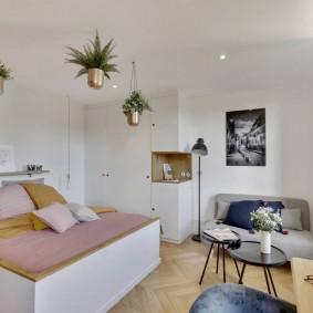 Живые растения в горках под потолком спальни
