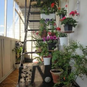 Живые цветы в интерьере балкона