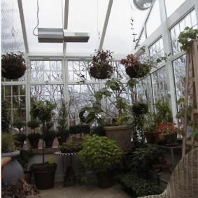 Зимний сад с алюминиевыми окнами