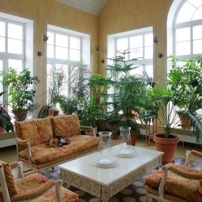 субтропические растения в зимнем саду частного дома