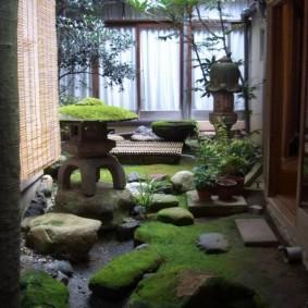 Зеленый мох в японском саду