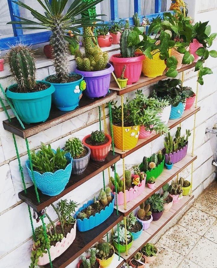 Этажерка с кактусами в разноцветных горшках