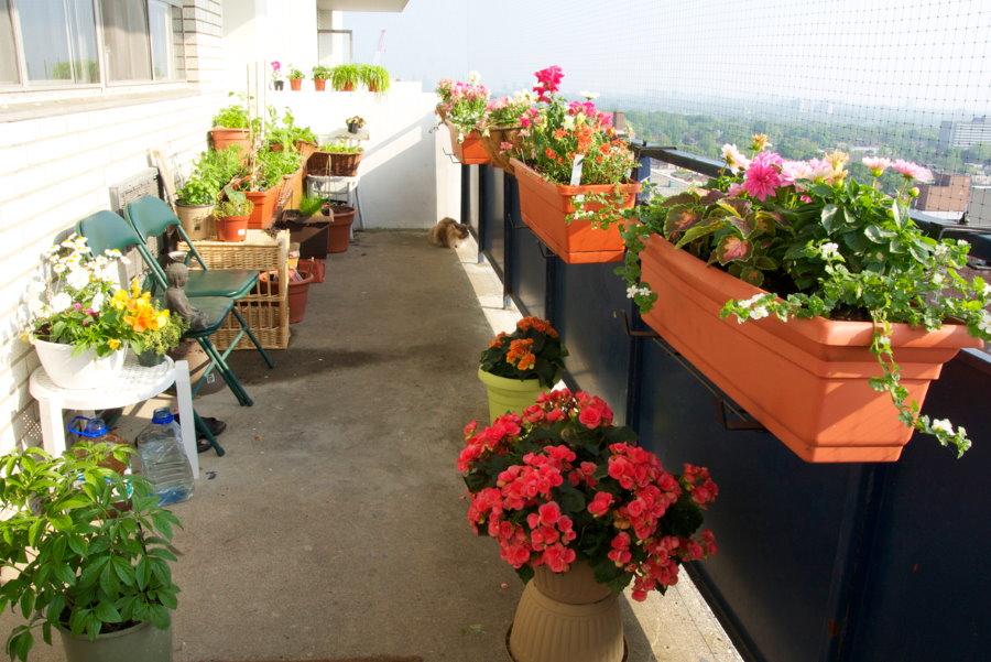 Коричневые контейнеры с летними цветами на балконе