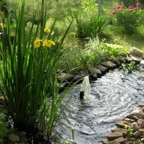 Небольшой пруд с погружным фонтанчиком